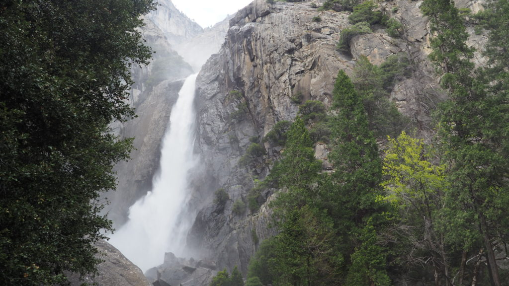 Lower Yosemite